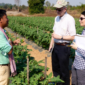 Professor of Agricultural and Applied Economics George Norton, at center, and Assistant Professor of Sustainable Food Systems Megan O'Rourke talk with a producer in Cambodia.