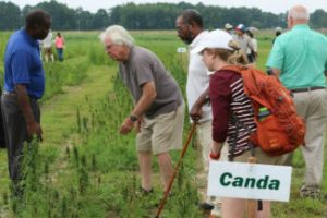 Industrial Hemp Field Day